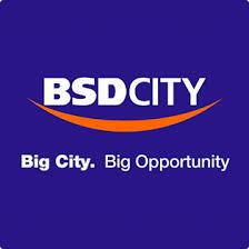 Logo BSD City